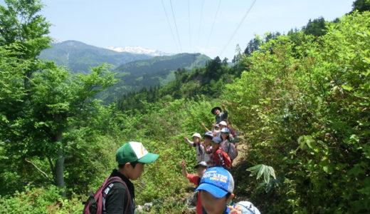 随時受付ガイド 集落を守るブナ林と大前山からの白山眺望(¥2,000/名・約2時間・5名様まで)