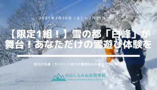 【限定1組】雪の都白峰が舞台!あなただけの雪遊び体験を(2月20日∼21日、1泊2日)